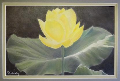 Yellow Flower - Tess Imobersteg